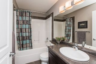 Photo 26:  in Edmonton: Zone 55 House for sale : MLS®# E4208515