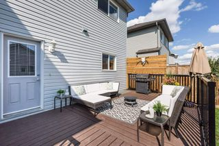 Photo 31:  in Edmonton: Zone 55 House for sale : MLS®# E4208515
