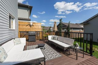 Photo 30:  in Edmonton: Zone 55 House for sale : MLS®# E4208515