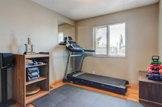Photo 23: 21 MCKENZIE Place SE in Calgary: McKenzie Lake Detached for sale : MLS®# A1032220