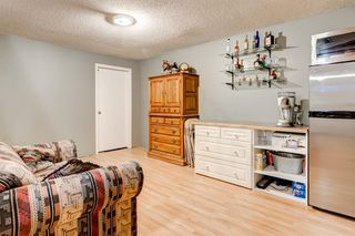 Photo 25: 21 MCKENZIE Place SE in Calgary: McKenzie Lake Detached for sale : MLS®# A1032220