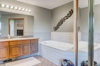 Photo 19: 21 MCKENZIE Place SE in Calgary: McKenzie Lake Detached for sale : MLS®# A1032220