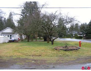Photo 4: 19784 44TH Avenue in Langley: Brookswood Langley House for sale : MLS®# F2818558