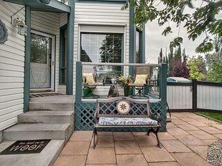 Photo 7: 3824 42 Street in Edmonton: Zone 29 House for sale : MLS®# E4170497