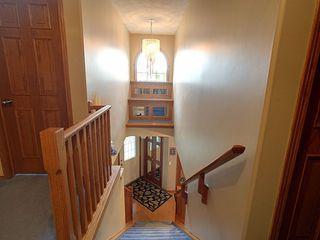 Photo 14: 3824 42 Street in Edmonton: Zone 29 House for sale : MLS®# E4170497