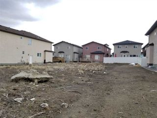 Photo 1: 16745 62 Street in Edmonton: Zone 03 Vacant Lot for sale : MLS®# E4173855