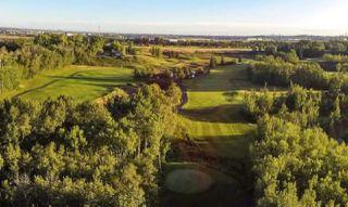 Photo 30: 1130 HAINSTOCK Green in Edmonton: Zone 55 House for sale : MLS®# E4183579