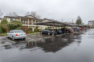 """Photo 2: 43 6467 197 Street in Langley: Willoughby Heights Townhouse for sale in """"Willow Estates"""" : MLS®# R2441134"""