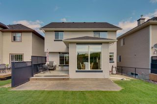 Photo 41: 10 KINCORA Landing NW in Calgary: Kincora Detached for sale : MLS®# A1014388