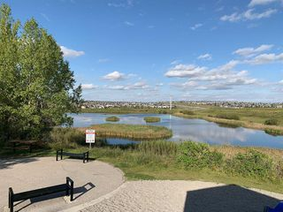 Photo 46: 10 KINCORA Landing NW in Calgary: Kincora Detached for sale : MLS®# A1014388