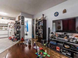 Photo 31: 8033 Sywash Ridge Rd in : Na Upper Lantzville House for sale (Nanaimo)  : MLS®# 857365