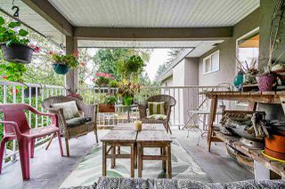 Photo 19: 10920 142B Street in Surrey: Bolivar Heights House for sale (North Surrey)  : MLS®# R2407921