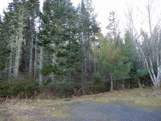 Photo 10: 350 MacBeth Road in Diamond: 108-Rural Pictou County Residential for sale (Northern Region)  : MLS®# 201926754
