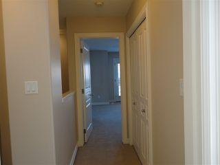Photo 20: 11845 102 Avenue in Edmonton: Zone 12 House Half Duplex for sale : MLS®# E4189270