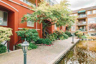 "Photo 21: 219 3 RIALTO Court in New Westminster: Quay Condo for sale in ""THE RIALTO"" : MLS®# R2466596"