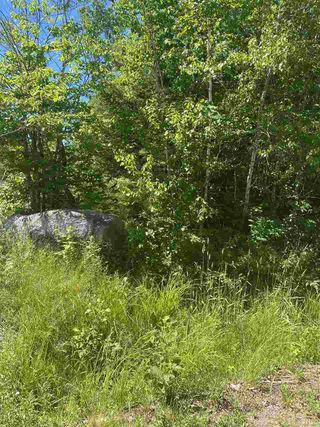 Photo 2: Lot 1 North River Road in Aylesford Lake: 404-Kings County Vacant Land for sale (Annapolis Valley)  : MLS®# 202011590