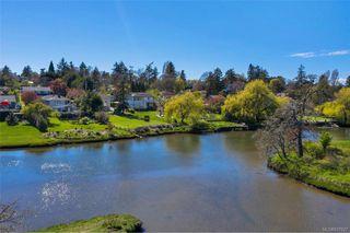 Photo 3: 734 Newbury St in Saanich: SW Gorge Single Family Detached for sale (Saanich West)  : MLS®# 837827