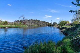 Photo 49: 734 Newbury St in Saanich: SW Gorge Single Family Detached for sale (Saanich West)  : MLS®# 837827