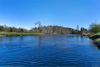 Photo 50: 734 Newbury St in Saanich: SW Gorge Single Family Detached for sale (Saanich West)  : MLS®# 837827