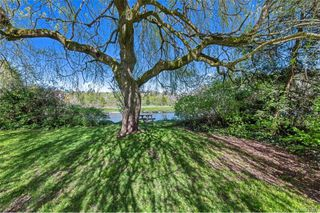Photo 6: 734 Newbury St in Saanich: SW Gorge Single Family Detached for sale (Saanich West)  : MLS®# 837827