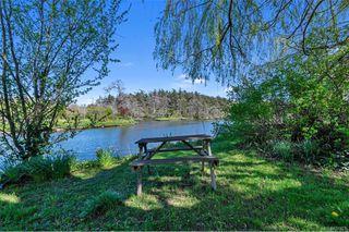 Photo 47: 734 Newbury St in Saanich: SW Gorge Single Family Detached for sale (Saanich West)  : MLS®# 837827