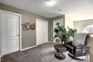 Photo 25: 156 Cimarron Park Circle: Okotoks Detached for sale : MLS®# A1043024