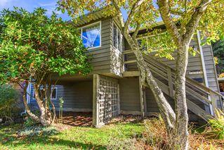 Photo 24: 10236 127 Street in Surrey: Cedar Hills House for sale (North Surrey)  : MLS®# R2514510