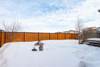 Photo 38: 14 DILLWORTH Crescent: Spruce Grove House for sale : MLS®# E4221371