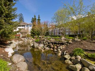 "Photo 10: 416 3629 DEERCREST Drive in North Vancouver: Roche Point Condo for sale in ""Deerfield by the Sea- Ravenwoods"" : MLS®# V821858"
