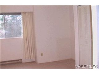 Photo 6:  in VICTORIA: Vi Oaklands Condo for sale (Victoria)  : MLS®# 417796