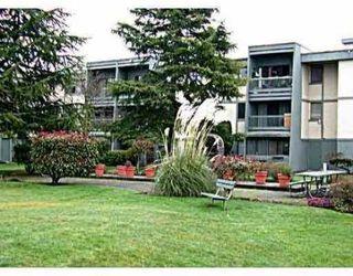 Photo 1: 305 3451 SPRINGFIELD Drive in Richmond: Steveston North Condo for sale : MLS®# V741634