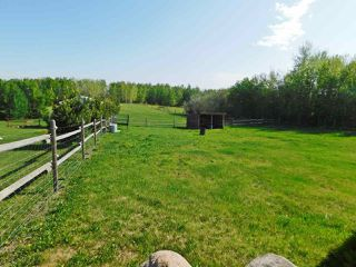 Photo 29: 57303 Rge Rd 233: Rural Sturgeon County House for sale : MLS®# E4169717