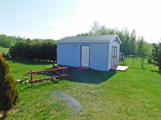 Photo 28: 57303 Rge Rd 233: Rural Sturgeon County House for sale : MLS®# E4169717