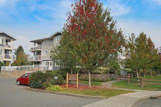 Photo 32: 21 111 20th St in : CV Courtenay City Condo for sale (Comox Valley)  : MLS®# 856374