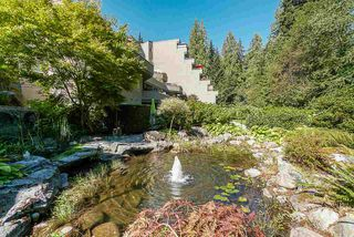 "Main Photo: 204 1500 OSTLER Court in North Vancouver: Indian River Condo for sale in ""Mountain Terrace"" : MLS®# R2530746"