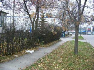 Photo 8: 579 SPRUCE Street in WINNIPEG: West End / Wolseley Residential for sale (West Winnipeg)  : MLS®# 2416471