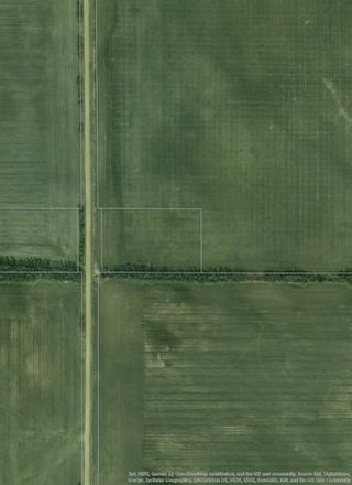 Photo 7: RR 254 1 mile N of Twp 574: Rural Sturgeon County Rural Land/Vacant Lot for sale : MLS®# E4187338