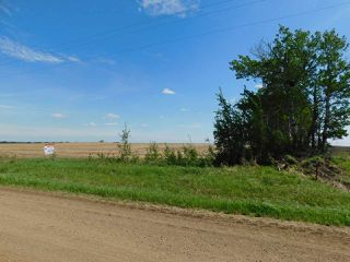 Photo 10: RR 254 1 mile N of Twp 574: Rural Sturgeon County Rural Land/Vacant Lot for sale : MLS®# E4187338