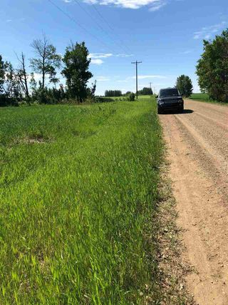 Photo 8: RR 254 1 mile N of Twp 574: Rural Sturgeon County Rural Land/Vacant Lot for sale : MLS®# E4187338