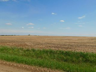 Photo 12: RR 254 1 mile N of Twp 574: Rural Sturgeon County Rural Land/Vacant Lot for sale : MLS®# E4187338