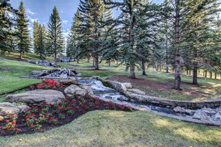 Photo 31: 919 MIDRIDGE Drive SE in Calgary: Midnapore Detached for sale : MLS®# A1016127