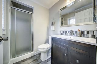Photo 19: 919 MIDRIDGE Drive SE in Calgary: Midnapore Detached for sale : MLS®# A1016127
