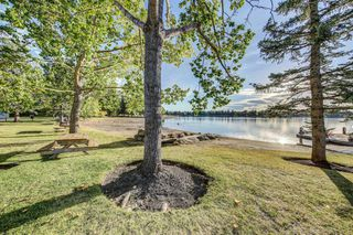 Photo 30: 919 MIDRIDGE Drive SE in Calgary: Midnapore Detached for sale : MLS®# A1016127