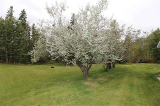 Photo 35: 53133 RGE RD 214: Rural Strathcona County House for sale : MLS®# E4214420