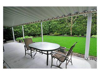 Photo 9: 12711 227B Street in Maple Ridge: East Central House for sale : MLS®# V820987