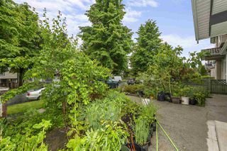 Photo 15: 3469 WILLIAM Street in Vancouver: Renfrew VE House for sale (Vancouver East)  : MLS®# R2459320