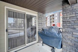 Photo 29: 101 12035 22 Avenue in Edmonton: Zone 55 Condo for sale : MLS®# E4201472