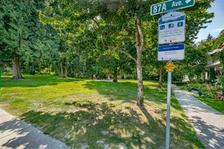 """Photo 40: 8693 206B Street in Langley: Walnut Grove House for sale in """"Discovery Town"""" : MLS®# R2479160"""