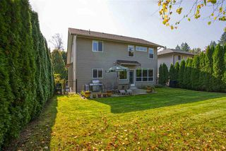 """Photo 22: 23369 133 Avenue in Maple Ridge: Silver Valley House for sale in """"Balsam Creek Subdivision"""" : MLS®# R2505587"""