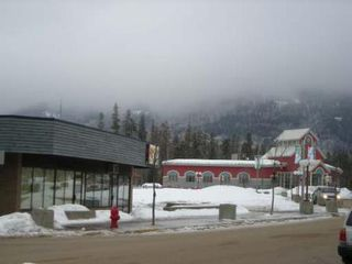 Photo 2: #140-230 Main Street: Land (Commercial) for sale (Other)  : MLS®# 100382